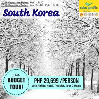5D4N Budget Tour in South Korea