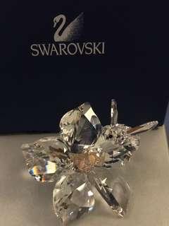 Swarovski Crystal 施華洛世奇 水晶 SCS20 crystal society 絕版