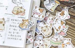 (PO) The Fluffy Cat Stickers