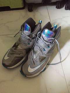 LeBron 13 shoes