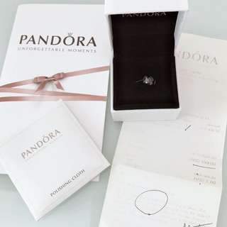 Pandora charm 潘多拉