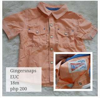Gingersnaps polo 18m