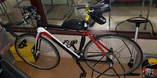 Urata Road Bike for 1.75m+
