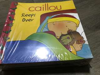 🚚 Caillou series 20 books