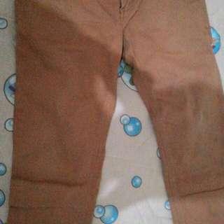 Jeans coklat