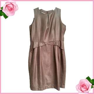 Viz-a-viz Classy Dress