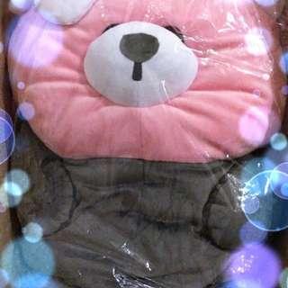 卡娜赫拉 精靈寶可夢 皮卡丘聯名 穿著熊