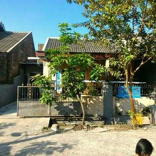 Rumah Kota Baru Driyorejo