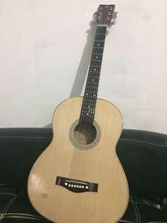 Gitar free tasnya