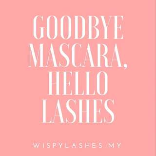 WISPY LASHES (THE ULTIMATE LASH LIFTING KIT)