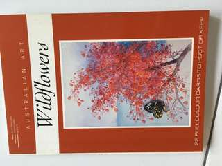 Wild flowers  postcards Australia art 22 full colour cards to post or keep
