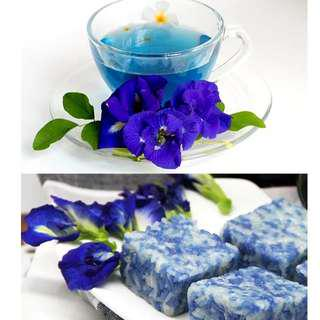 (price drop!!) $10 for 100g of blue pea flowers