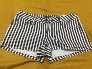 Hot pant zebra