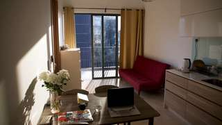1 BR apartment in a new condo