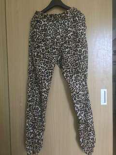 Terranova Leopard pants