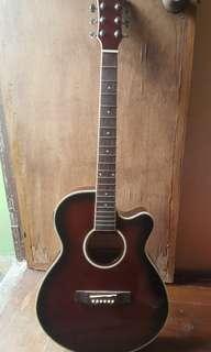 Fernando Electric Acoustic Guitar Free Capo