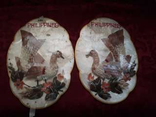 Clamshell Philippines wall display