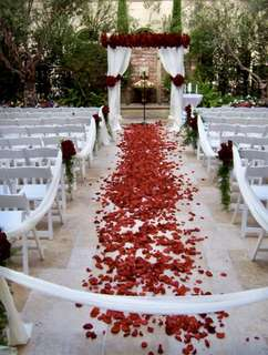 Tabur bunga wedding rose petal