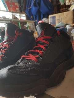 Jordan 11 low