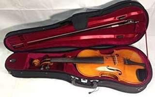 viola 15 inch