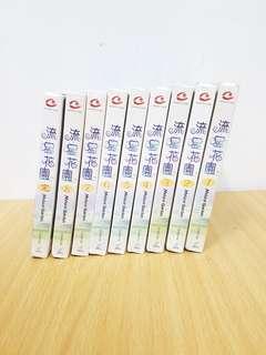流星花園VCD全套 共19片