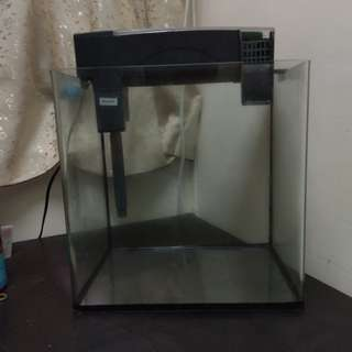 魚缸 30高30闊20高(CM) 連 dazs 瀘水30-45(cm)適用