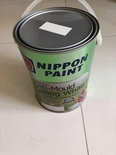Paint 🎨