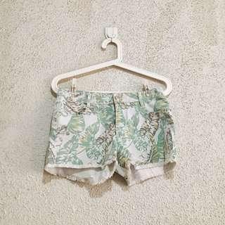 Just G Tropical Green Shorts