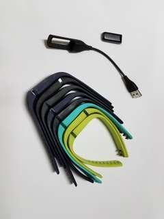 Fitbit Flex with replaceable straps