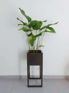 Balcony Planter Stand, Metallic Flower Display Magazine Rack