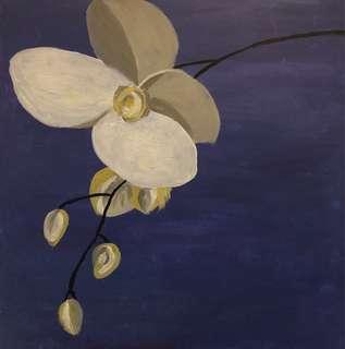 Madam Orchid
