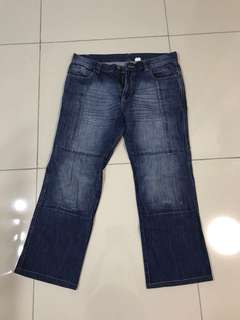 Oxford riding jeans