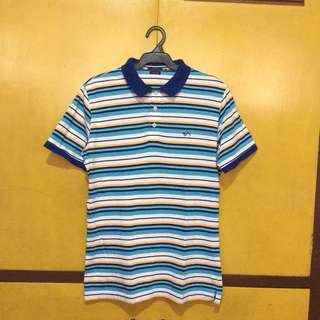 Sahara Striped Polo Shirt