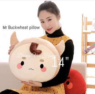 Mr buckwheat pillow