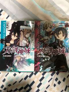 Sword Art Online Novel (chinese)