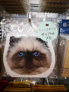 🚚 BN Cat Notepad / Memo Pad