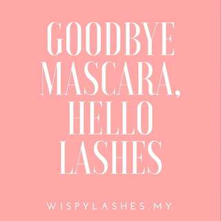 Wisphy Lashes (The Ultimate Lash Lifting Kit)