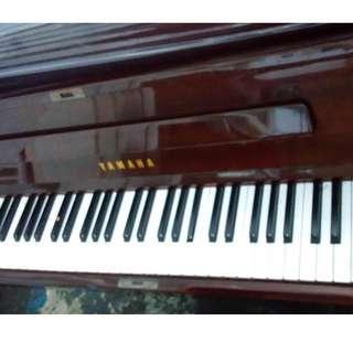 Yamaha Beginner Entry Level Piano #jp16d07m2018yr0699pr