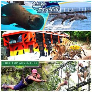Subic Ocean Adventure, Zoobic Sarafi & Tree Top Adventure
