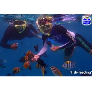 4D 3N Discover Mabul Island + Kapalai Island (Sabah)