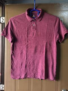 Preloved Branded T-Shirt and Polo Shirts for PLUS MEN!