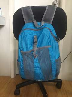 HighSierra foldable backpack