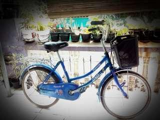 Sepeda cewe ukuran 20