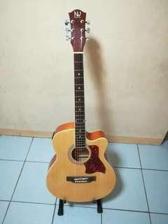 Limited Edition Nashville Acoustic Guitar