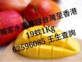 台灣愛文芒,芭樂水果專線 1Kg 19蚊 一日到手