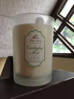 Bath and Body Works Eucalyptus Mint Single-Wick Candle