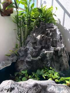 Water Feature /  Fish Pond