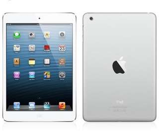 iPad mini 1 WiFi (16GB)