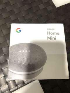BN Google Home Mini