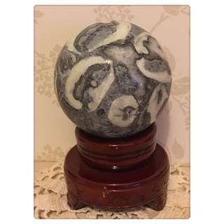 🚚 貝類化石 石球(直徑約12cm)風水轉運球